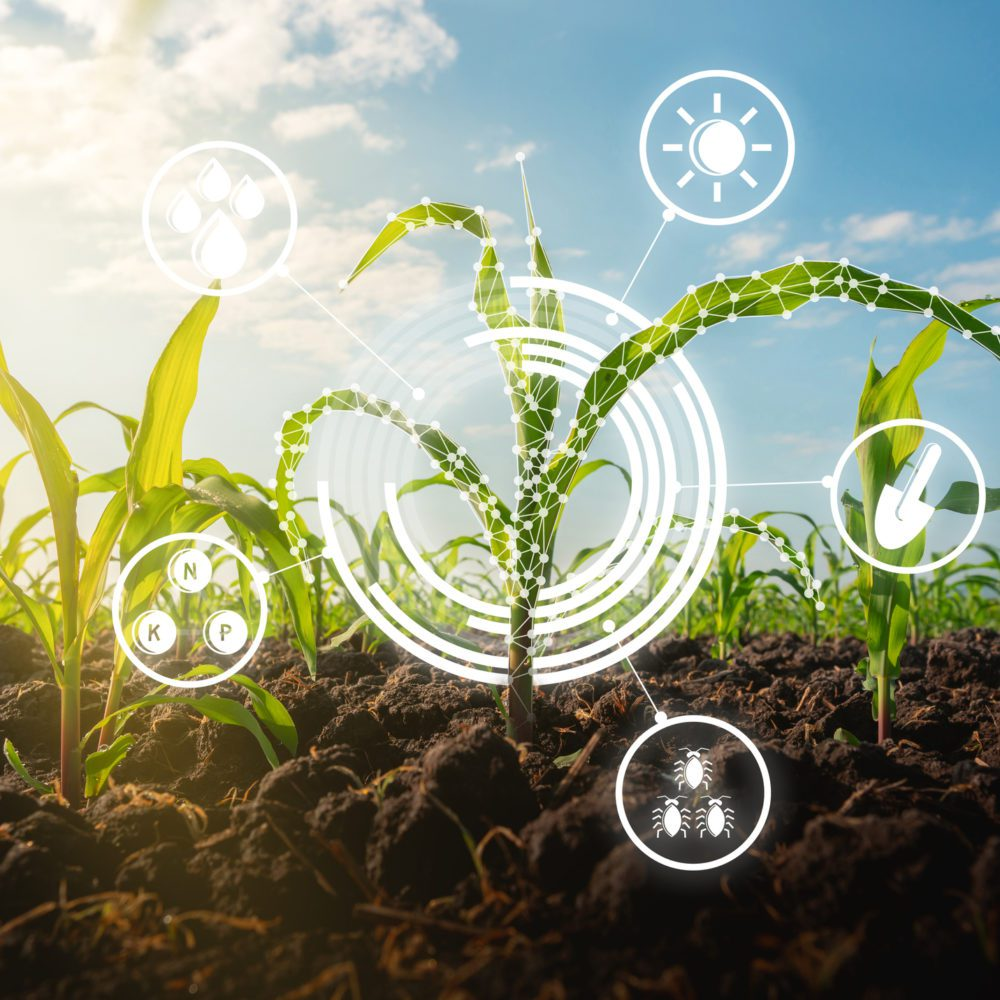 Industrial IoT Agritech